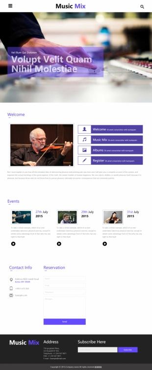 音乐类英文网站建设模板 响应式网站  电脑图片