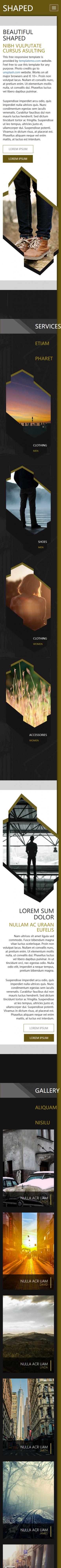 个性设计棕色牛仔服装企业英文网站模板手机图片