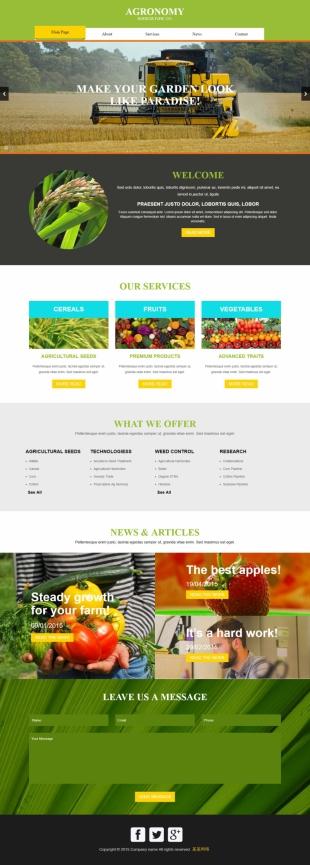有机水果蔬菜英文网站制作模板电脑图片