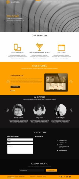 企业站英文网站制作模板电脑图片