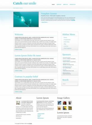 白色清晰斜纹英文CSS模板网站制作电脑图片