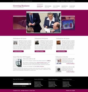 Growing Business英文网站模板电脑图片