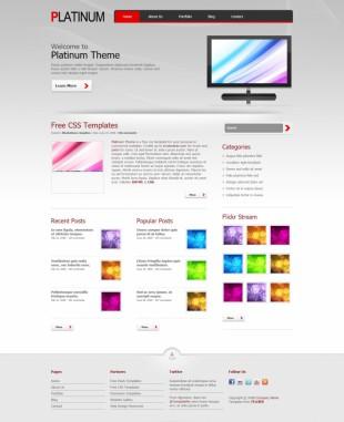 Platinum Theme英文网站模板电脑图片