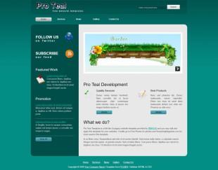 Pro Teal英文模板网站电脑图片
