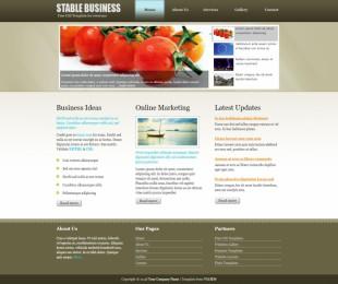 Stable Business英文模板网站电脑图片