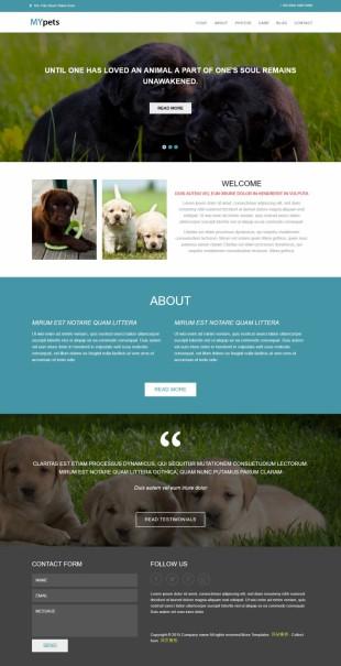 宠物家园宽屏大气响应式英文网站建设模板电脑图片