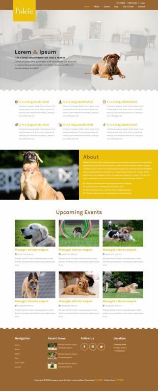 宠物医院企业英文网站建设模板电脑图片