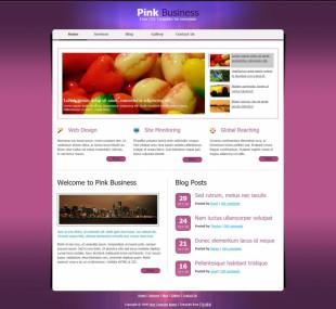 粉红色简洁的商业英文网站模板制作电脑图片