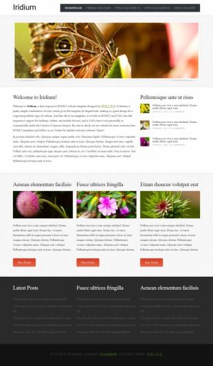 动植物类英文网站制作模板电脑图片