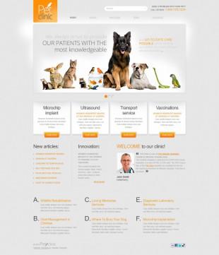 宠物类英文网站模板制作电脑图片