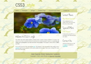 小清新英文博客模板网站建设电脑图片