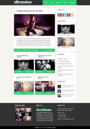 纯色扁平化简洁摄影博客网页模板网站制作电脑图片