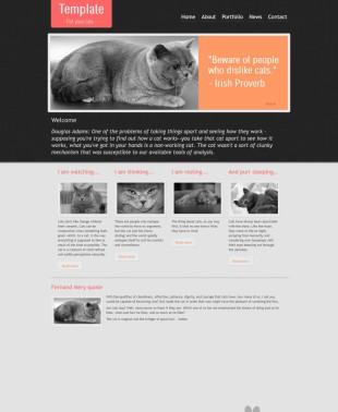 纯色漂亮的宠物猫企业网站模板制作电脑图片