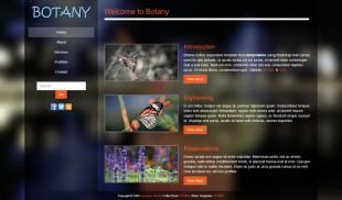 黑色漂亮透明背景英文模板网站建设电脑图片