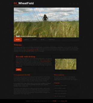 黑色摄影图片展示首页英文模板网站制作电脑图片