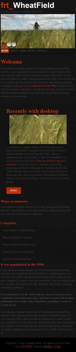 黑色摄影图片展示首页英文模板网站制作手机图片