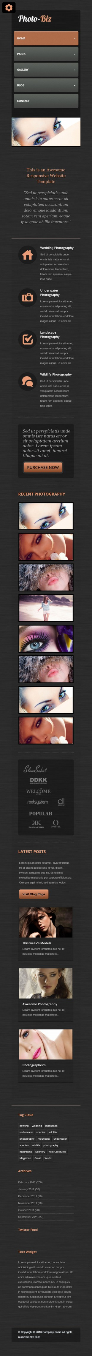 黑色质感纹理化妆品公司英文网站建设模板手机图片