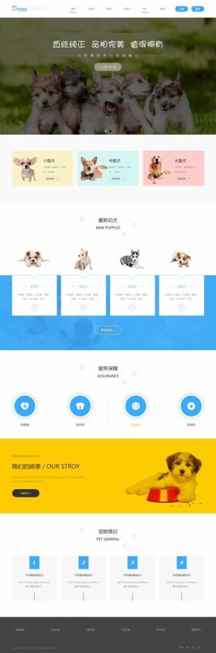 宠物类网站通用模板电脑图片