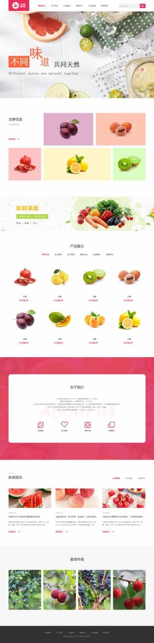 蔬菜基地网站建设模板html5动画站电脑图片