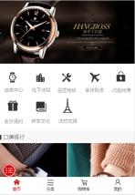 名牌手表网站建设模板手机图片