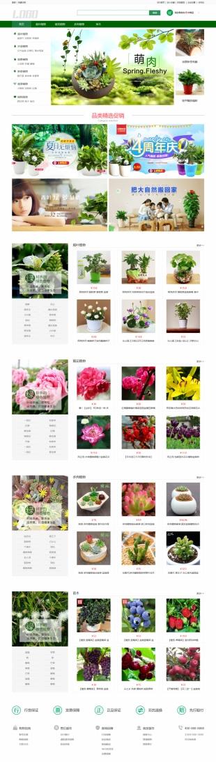 盆栽植物类网站建设模板电脑图片