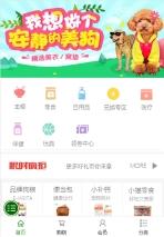 宠物用品类网站建设模板手机图片
