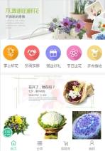 室内装饰鲜花盆景类网站建设模板手机图片
