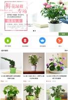 观赏植物鲜花类网站建设模板手机图片