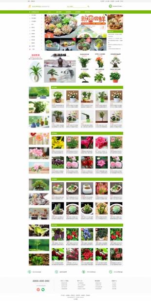 小型盆景多肉类网站制作模板电脑图片