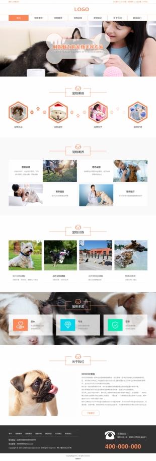 宠物类网站建设模板电脑图片