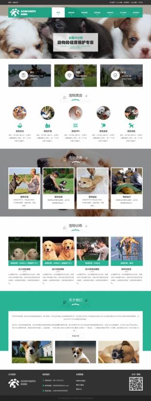 宠物寄养网站建设模板电脑图片