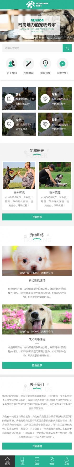 宠物寄养网站建设模板手机图片