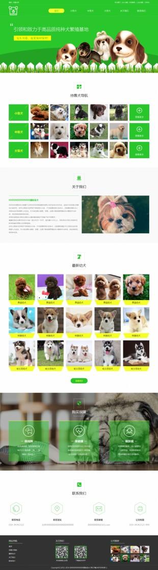宠物交易网站建设模板电脑图片