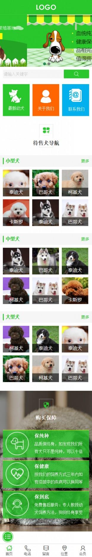 宠物交易网站建设模板手机图片