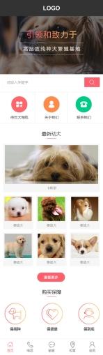 宠物犬类网站建设模板手机图片